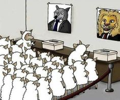 Politics in a Nutshell - The Memes Factory Political Art, Political System, Political Cartoons, Political Issues, Political Views, Share Pictures, Best Funny Pictures, Funny Pics, Politisches System