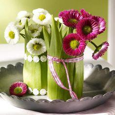 Bellis und Tulpenblätter