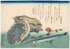 ando hiroshige fish - Поиск в Google