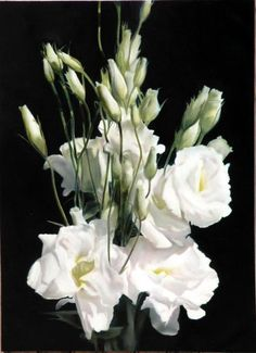 Lizianthus by Thomas Darnell