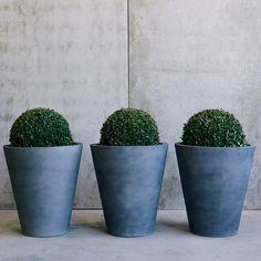 Witch Hunt Pots by The Balcony Garden | Garden Pots | Pot Plants | Planters | Flower Pot| Designer Pots