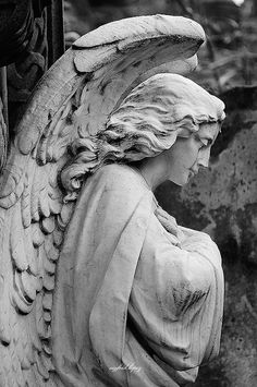 ☫ Angelic ☫ winged cemetery angels and zen statuary - Buenos Aires Angel idea for drawing Cemetery Angels, Cemetery Statues, Cemetery Art, Angel Statues, Statue Ange, Gardian Angel, La Danse Macabre, Angel Sculpture, Sculpture Art