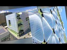 Micro: Biomimética