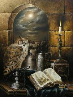 An owl, candle light, and a Book of Shadows ❤ Spiritual Healer, Spirituality, Magick, Witchcraft, Wicca, Animé Halloween, Spell Caster, Tier Fotos, Owl Art
