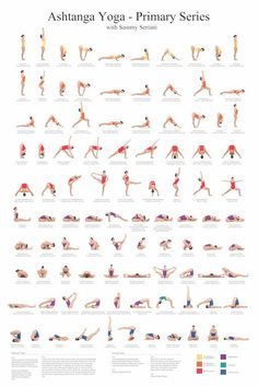 Ashtanga Yoga Primary Series with Sammy Seriani. This poster illustrates the postures of the primary series Full color poster shows perfect yoga Ashtanga Yoga Primary Series Poster Yoga Fitness, Fitness Workouts, Physical Fitness, Fitness 24, Fitness Sport, Fitness Motivation, Muscle Fitness, Fitness Tips, Health Fitness
