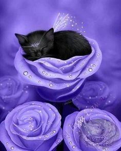 Items similar to SALE Black Cat Art Print // Sleeping Kitten // Lilac Daydreams - on Etsy Purple Love, All Things Purple, Purple Rain, Purple Stuff, Periwinkle, Purple Bed, I Love Cats, Crazy Cats, Cute Cats