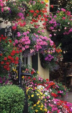 multiple hanging baskets - love this for area around a garage or patio where you can't plant on the ground.