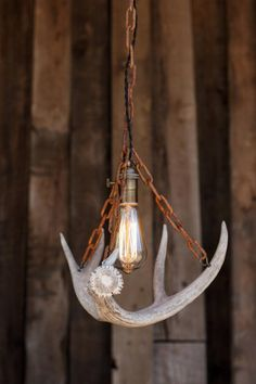 Items similar to The Durango Chandelier - Antler Pendant Light - Rustic Chain Antler Shed Lamp - Hanging Ceiling lighting Fixture -Edison Bulb on Etsy Deer Antler Lamps, Antler Lights, Antler Art, Deer Antlers, Ceiling Light Fixtures, Ceiling Lights, Antler Crafts, Rustic Pendant Lighting, Steel Canopy