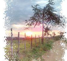 «Sunrise Landscape Prairie» de LeytonKit #Sun #Nature #Sunset #Day #Tree #Way