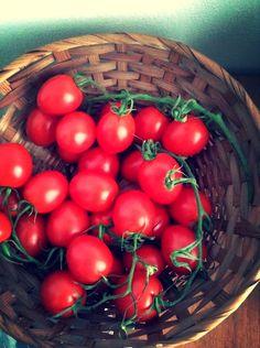Pomodori piccadilly