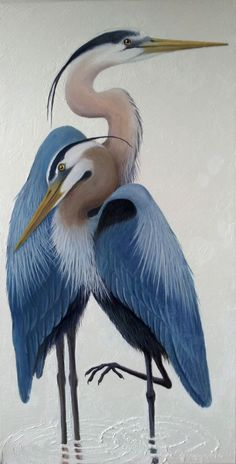 "Great Blue Heron 48""x 24"" oil on canvas $1100 #OilPaintingOnCanvas #OilPaintingBirds"