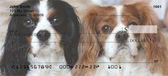 Cavalier King Charles Dogs Checks