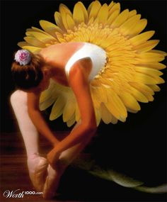 Floral Classical Ballet Tutu...Maybe I should have pinned this under my Sunflowers!