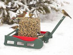 Sleigh Seed Block Feeder - Great for ground feeders like cardinals. via Duncraft