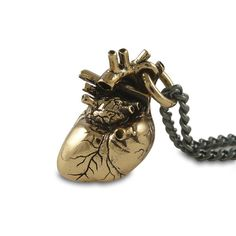 "Anatomical Heart Necklace Bronze Anatomical Heart Pendant on 24"" Gunmetal Chain"