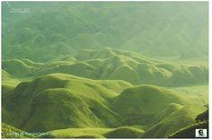 Lush Evergreen Hillocks of Dzuko Valley, Manipur