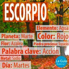Descubre más sobre Escorpio: http://www.laguiaesoterica.com/horoscopos/24-escorpio-24-octubre-22-noviembre.html