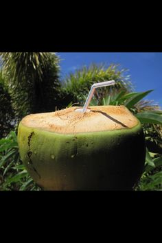 Coconut water-The real stuff