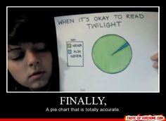 When it's okay to read twilight pie chart.