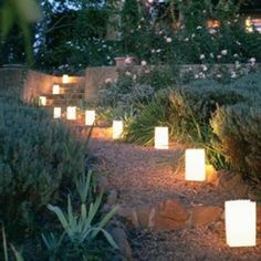 outdoor romantic ideas - Google Search