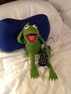 Funny Kermit Memes, Cute Memes, Sapo Frog, Sapo Kermit, Frog Meme, Fraggle Rock, Miss Piggy, Kermit The Frog, Memes Br