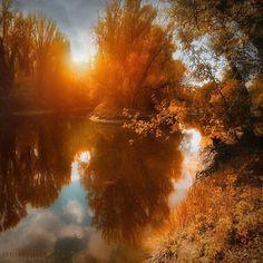Роскошный осенний лес в фотографиях Илдико Неер (Ildiko Neer)