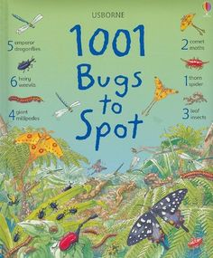 1001 Bugs to Spot (1001 Things to Spot) by Emma Helbrough http://www.amazon.com/dp/0794524931/ref=cm_sw_r_pi_dp_aH6Mtb1PACXCR0N2