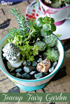 Looking for a cute home decor DIY? Upcycle a neglected teacup into a charming mini garden featuring wee garden accessories and easy-care plants!