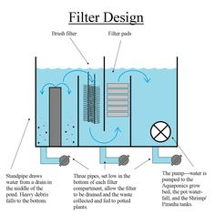39 Awesome Koi Pond Filter System Images Exercise