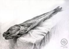 정물소묘 북어 Drawing Sketches, Drawings, Art Education, Still Life, Monochrome, Lion Sculpture, Animation, Statue, Pencil