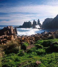 Phillip Island | #Australia #Nature #Travel