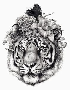 Tigre Shourouk by Ugo Gattoni