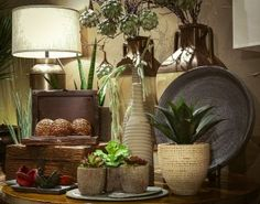 Small accessories can a big punch with bold colors and unique textures. Mixing woven, metal and ceramic elements add interest in any interior. Don't forget the greens, florals always add the much needed softness inside and out. Cacti And Succulents, Succulent Arrangements, Desert Plants, Bold Colors, Accent Decor, Contemporary Design, Outdoor Gardens, Design Inspiration, Interior