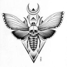 Resultado de imagem para sacred geometry moth