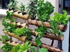 The Garden Of Your Dreams Is Within Your Reach – Read On! | Home Decor #verticalfarming