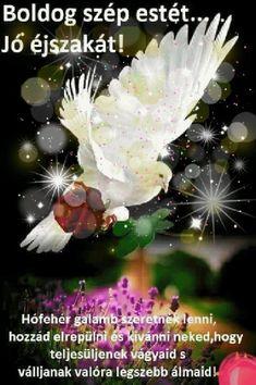 Osztva Beautiful Birds, Wish, Album, Movie Posters, Red Roses, Film Poster, Billboard, Film Posters, Card Book