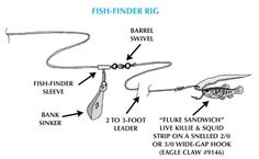 fishing rig diagrams | fluke fish finder rig this versatile rig works well whether