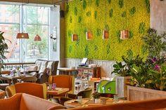 La mousse végétale en déco indoor & outdoor en 30 idées complètement hallucinantes !