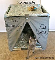 Homemade cat bed, hammock, and tent! Crazy Cat Lady, Crazy Cats, Homemade Cat Beds, Cat Hammock, Hammock Tent, Diy Cat Toys, Cat Towers, Cat Condo, Cat Room
