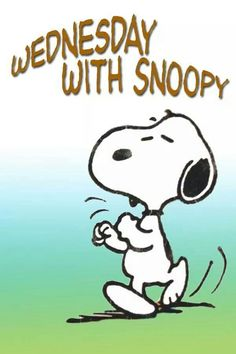 Wednesday With Snoopy wednesday happy wednesday wednesday image quotes wednesday quotes and sayings Wednesday Greetings, Happy Wednesday Quotes, Happy Thursday, Wednesday Humor, Die Peanuts, Peanuts Snoopy, Charlie Brown Quotes, Charlie Brown And Snoopy, Peanuts Characters