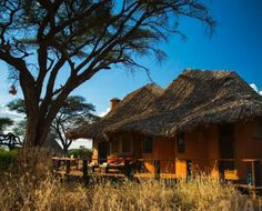 Tawi Lodge- is located on a private conservancy of 6,000 acres just five minutes from Kimana Gate, the eastern entrance to Amboseli National Park, at the foot of Mount Kilimanjaro (5,963m) – the world's largest free-standing mountain. Tawi Lodge offers stylish accommodation while visiting Amboseli and also contributes in the promotion of a harmonious development for the wildlife and the Masai people along the corridor between Amboseli and the Chyulu Hills. Mount Kilimanjaro, Corridor, Tanzania, Habitats, Acre, Woodland, Entrance, Promotion, National Parks