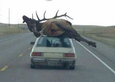If there's a will, there's a way. Lol!!
