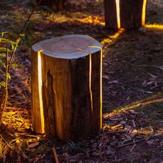 Tasmania-based furniture and lighting designer Duncan Meerding highlights the naturally occuring cracks in sustainably sourced logs by inserting warm yellow LEDs that illuminate each piece of wood from within. Meerding, who is legally blind, is fascinated by unusual light applications which he r