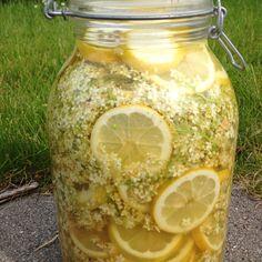 Hyldesaft. Homemade elderflower lemonade. The drink of the fey folk.