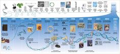 Human Genome Timeline