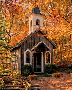 Church Photograph - Chapel In The Woods by Victoria Sheldon