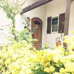 レンガの小道/ナチュラルガーデン/ガーデニング/庭/今日の庭/花…などのインテリア実例 - 2015-04-28 16:03:05   RoomClip(ルームクリップ)