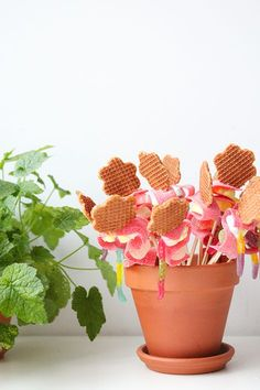 A birthday idea that you can make with one of our favorites: sour stripes Simple Flower Drawing, Easy Flower Drawings, Easy Flower Painting, Acrylic Painting Flowers, Kids Birthday Treats, Birthday Gifts, Jw Gifts, Annual Flowers, Flower Doodles