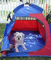 Small Mighty Mite Dog Tent weighs only 3 pounds.  Has a water bowl holder, paw safe anti-rip zipper, paw zipper guard, mesh on three sides, storage pockets and super set technology poles!