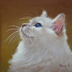 One more cat:) pastel on canson paper